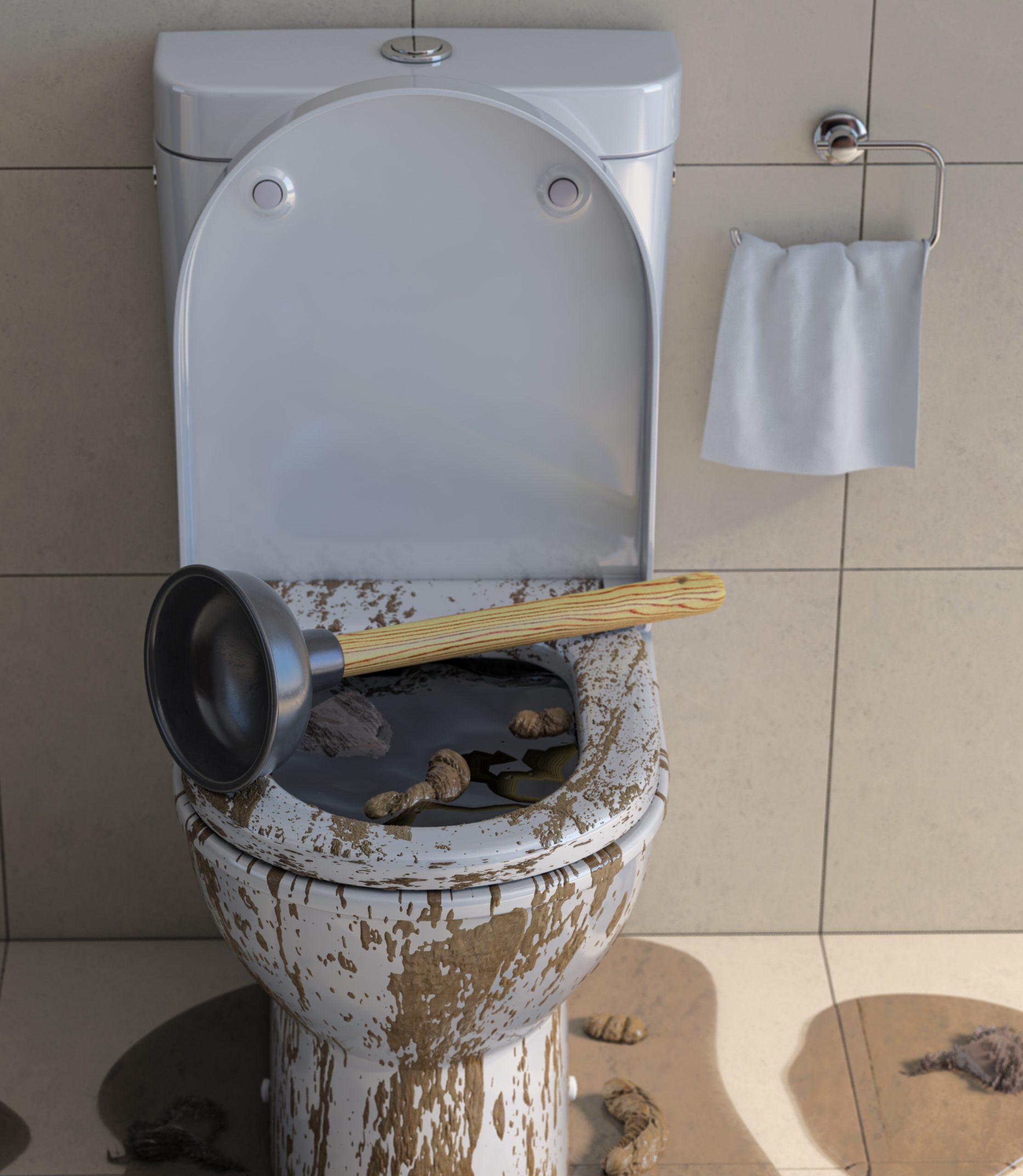 toilet clogged and not draining - Choice Plumbing Orlando Rooter & Drain Cleaning